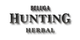 Beluga Hunting Herbal